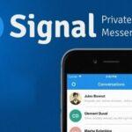 Число установок Signal увеличилось на 4 200%